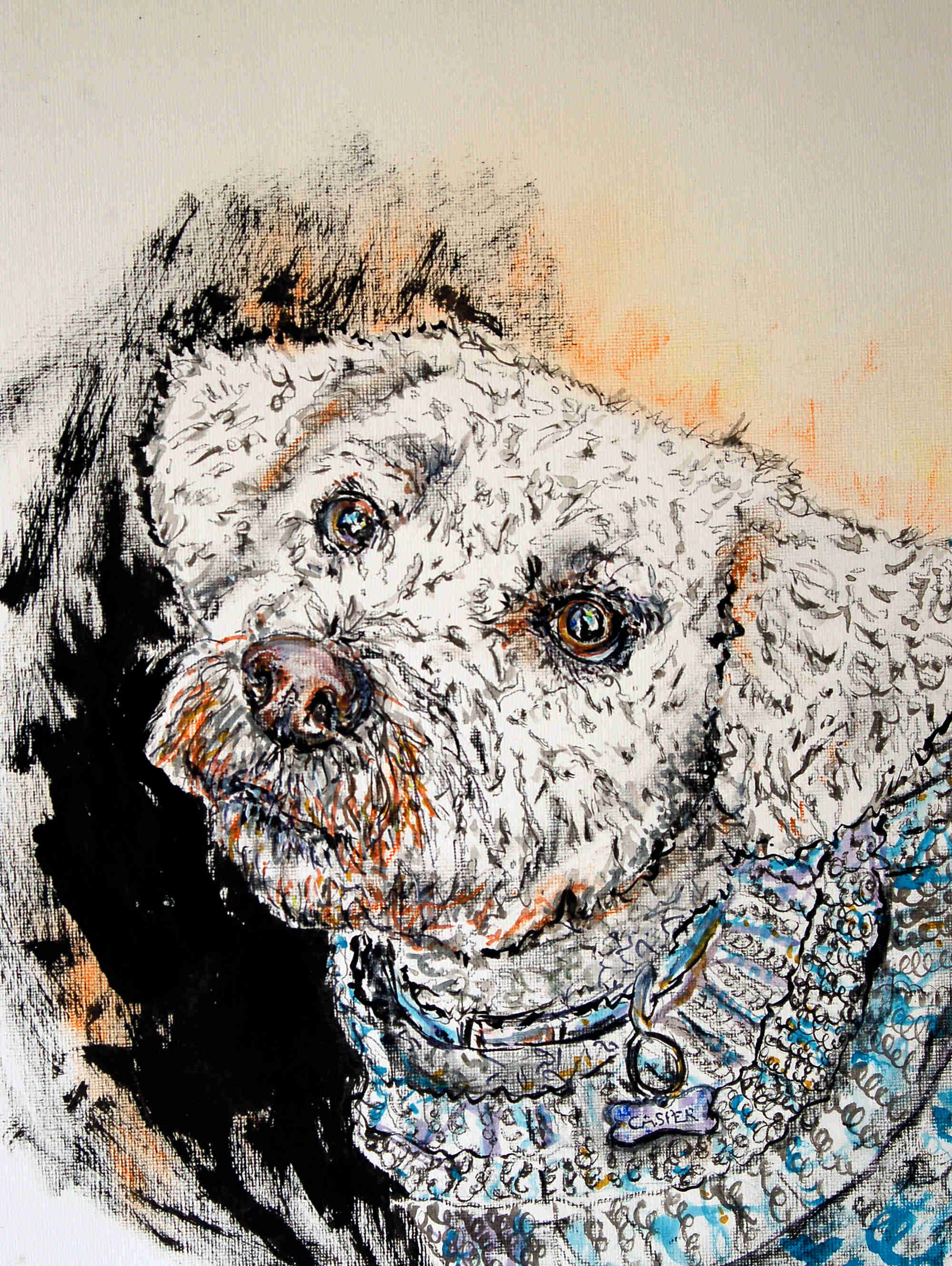 a finished picture of the same bichon frise